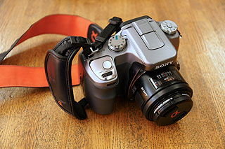 DSC05350.jpg