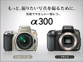 SZ3203.jpg
