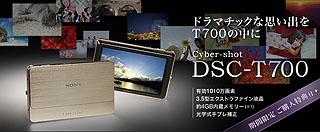 SZ4179.jpg