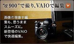 SZ4460.jpg