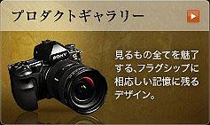 SZ4460 のコピー.jpg