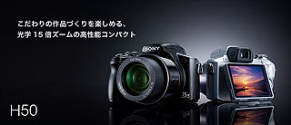 SZ4688.jpg